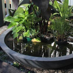 WaterFeature_1