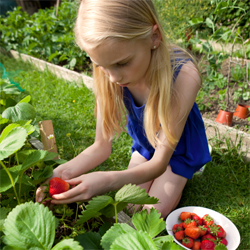 childgardener_1